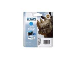 Epson T1002 Cyan Ink Cartridge
