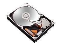 Maxtor DiamondMax 21 SATAII 250GB 8MB Cache Hard Drive <11.0ms 7200rpm - OEM